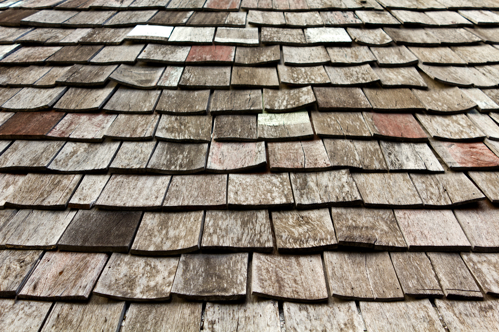 Roof Damage? Here's What to Look For