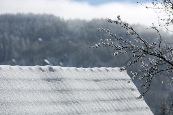 Preparing Your Colorado Home for Winter Weather