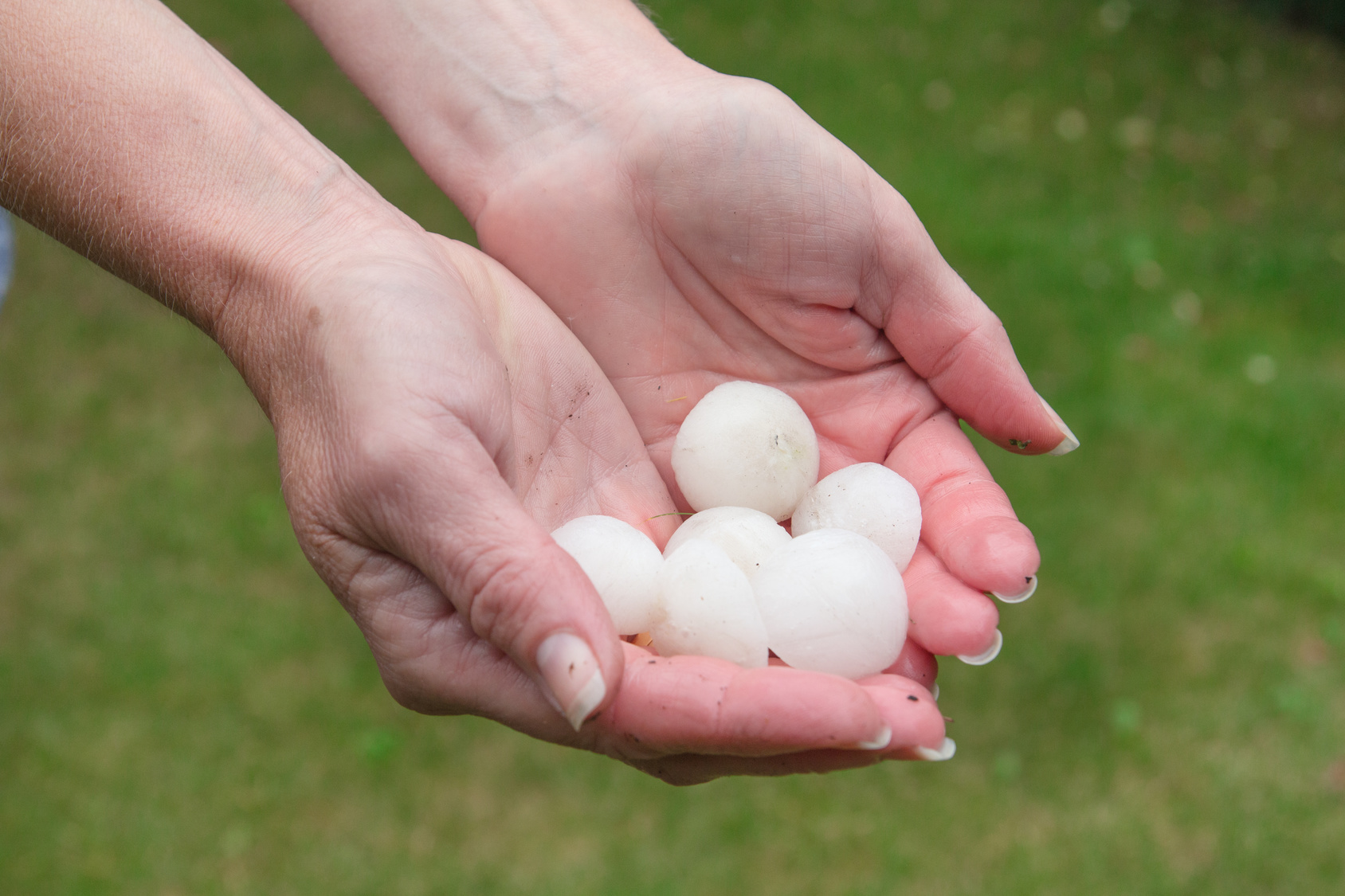 It's Hail Season in Colorado. Here's What You Need to Know